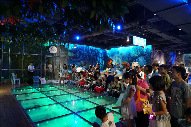【会员免费】岳阳海立方海洋公园